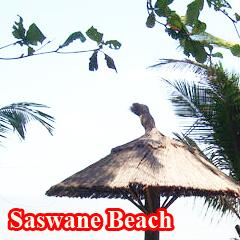 saswane-beach